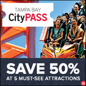 Save 50% at 5 Must See Attractions