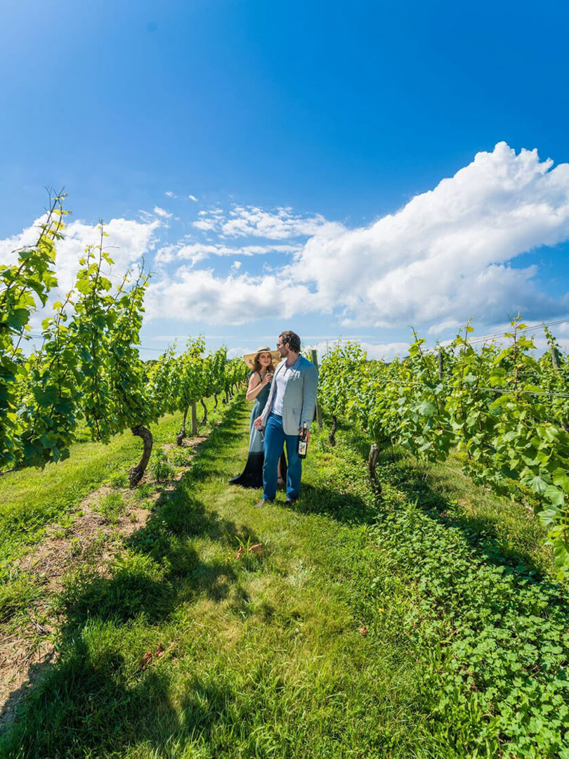 Discover Long Island - Vineyards