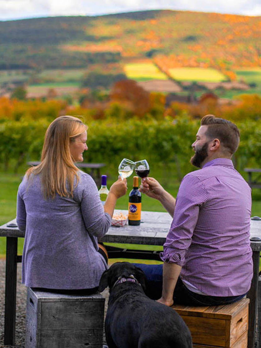 Middleburgh Winery, Schoharie County, NY
