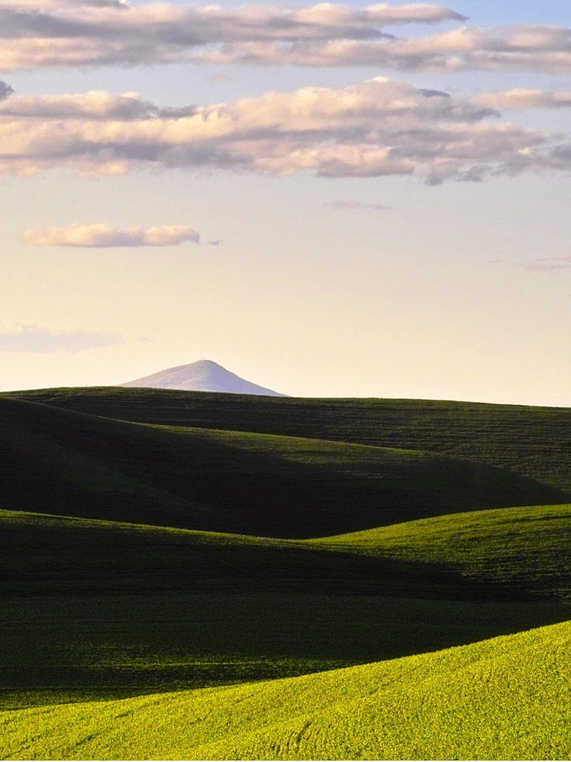Gorgeous View of the Palouse, Pullman, WA