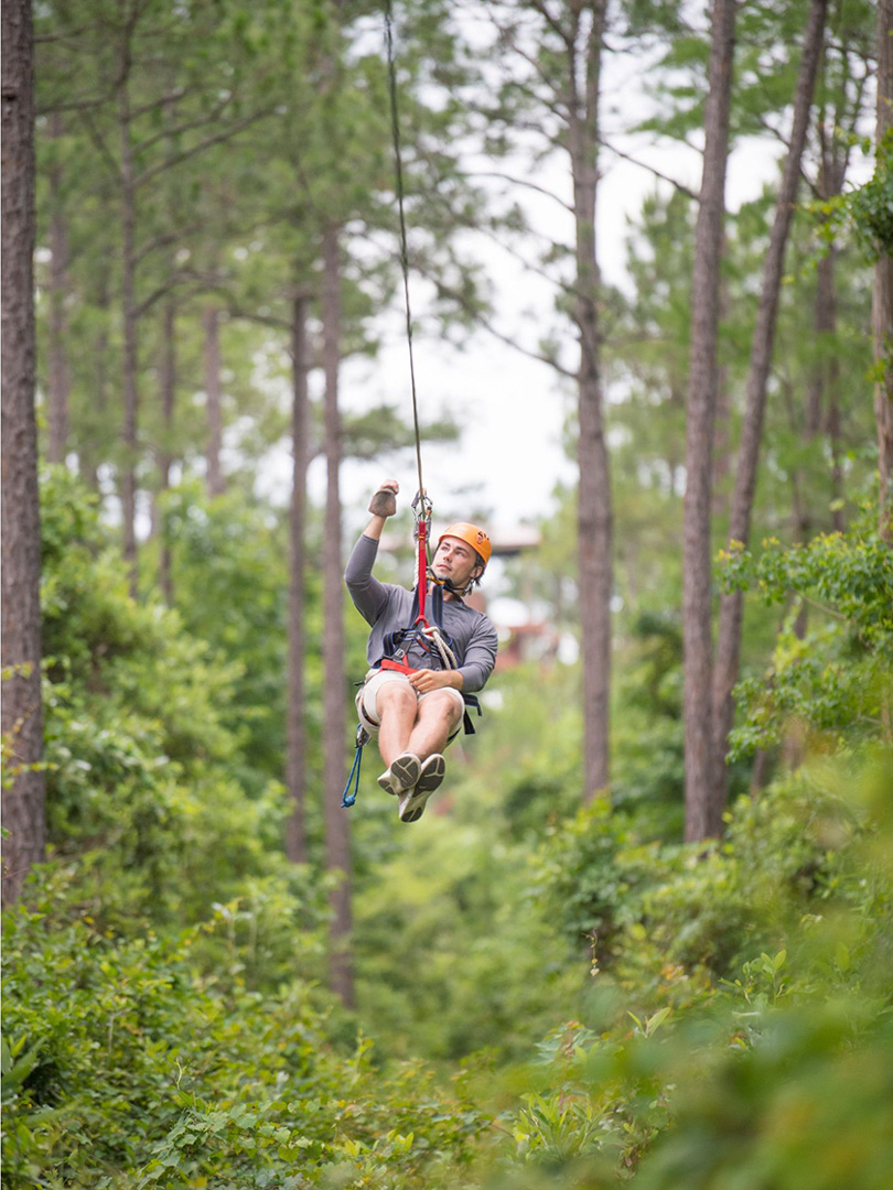 Hummingbird Zipline at The Wharf in Orange Beach, AL