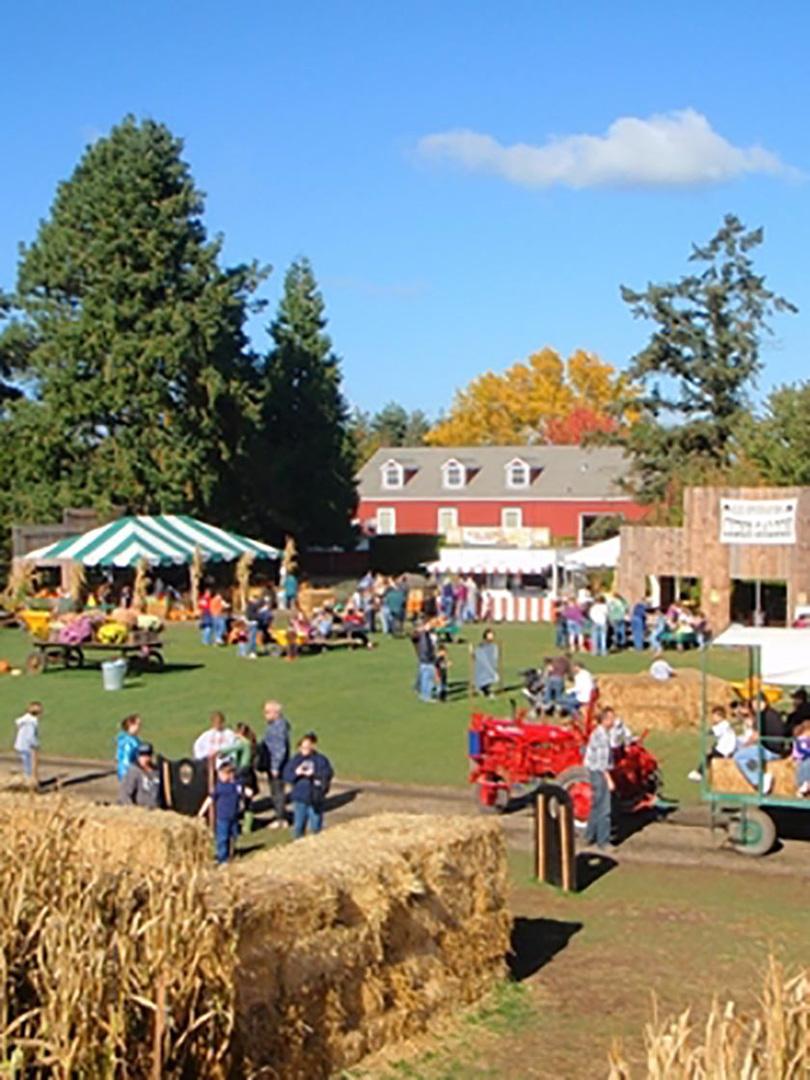 Harvestfest, Willamette Valley, OR